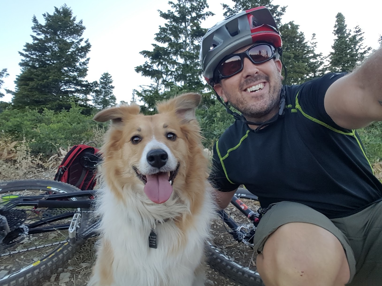 Happy Mountain Bike Dog