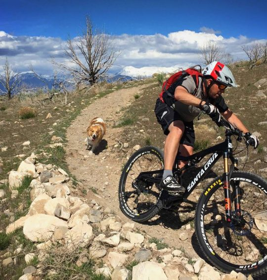 Mountain Bike Dog Basics