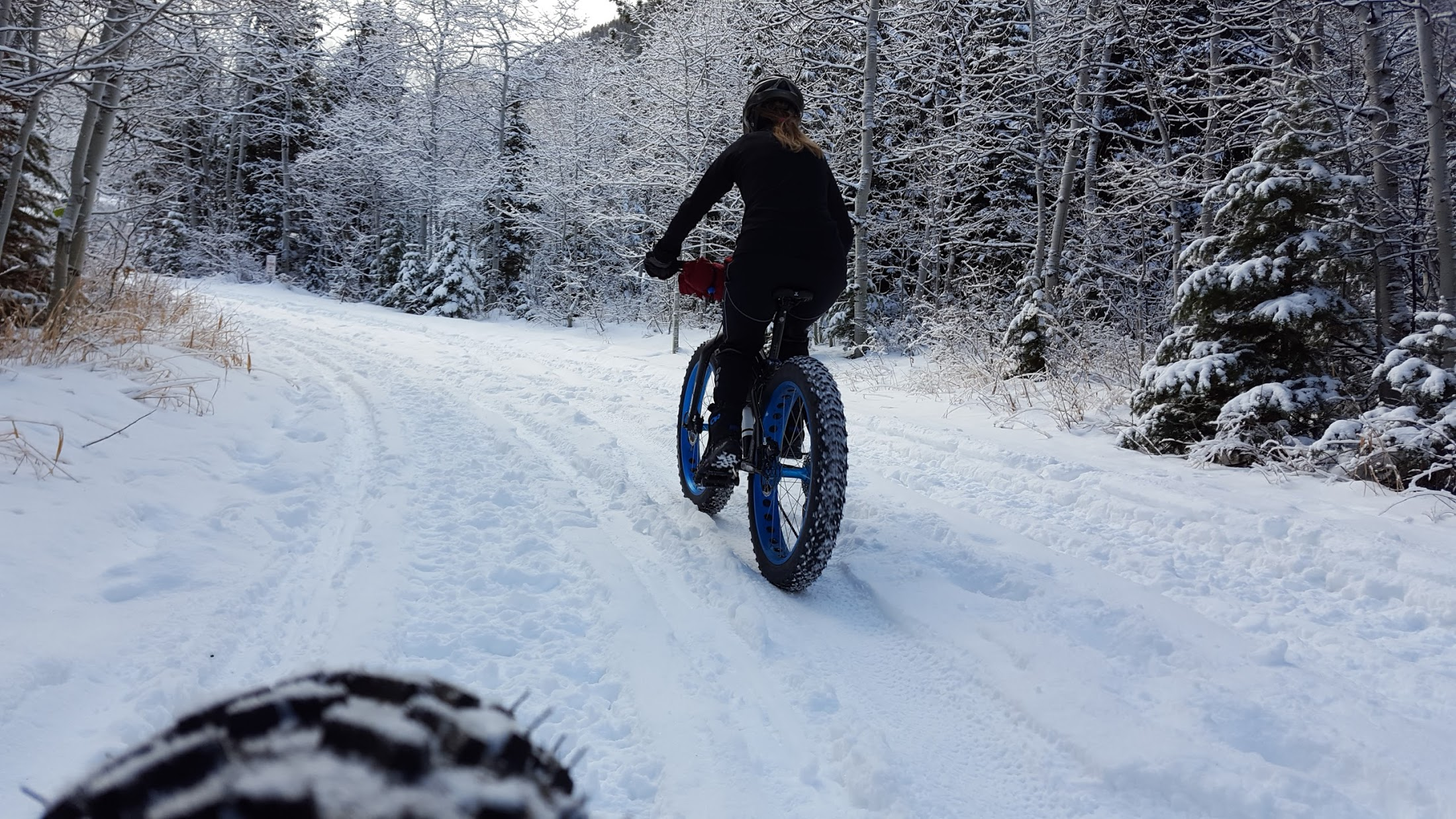 girl riding a fat bike in the snow