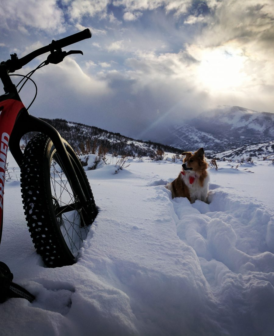 Fat Bike Fundamentals