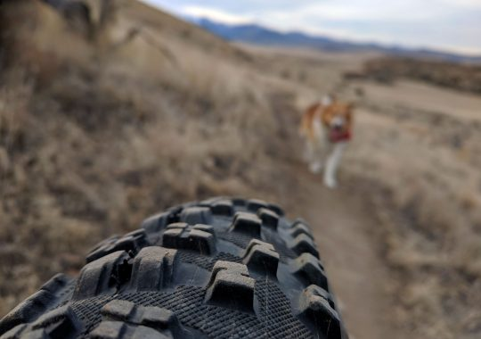 February Fat Bike Trail Ride